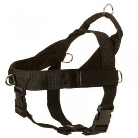 Samoyed Harness Nylon with Patches