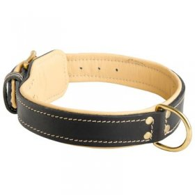 Padded Leather Samoyed Collar