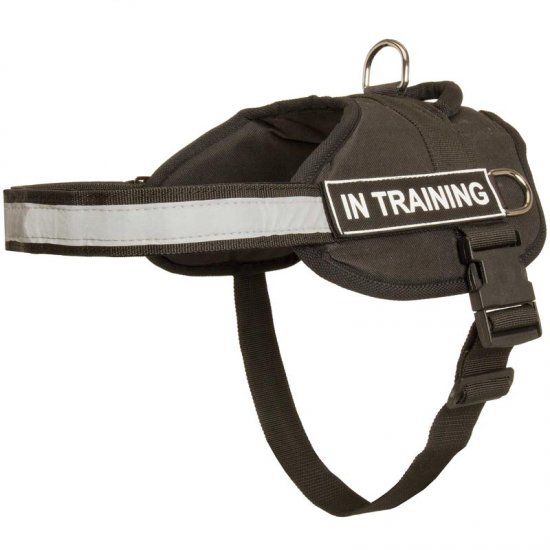 Nylon Samoyed Harness with Reflective Strap for Training, Walking, Police Service, SAR and More