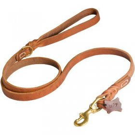 Walking and Training Leather Samoyed Leash with Comfy Handle
