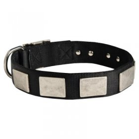 Nylon Samoyed Collar Massive Nickel Plates