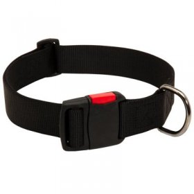 Any-Weather Nylon Samoyed Collar With Quick Release Buckle for Training and Walking