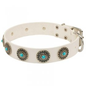 Exclusive White Leather Samoyed Collar with blue stones