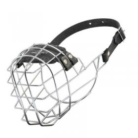 Wire Cage Samoyed Muzzle With One Strap