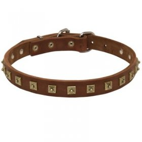 Handcrafted 1 Row Square Studded Leather Samoyed Collar