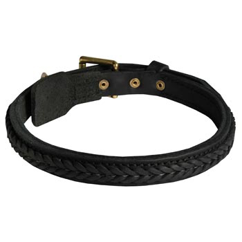 Braided Leather Collar for Samoyed