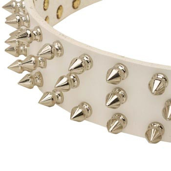 Spiked White Leather Collar for Samoyed Walking