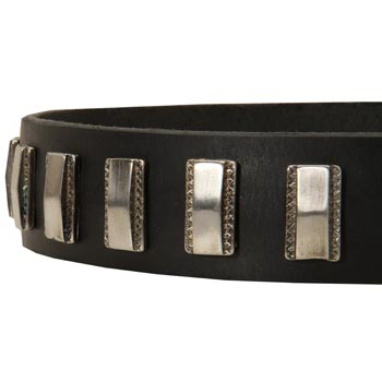 Stylish Leather Collar with Vintage Plates for Samoyed