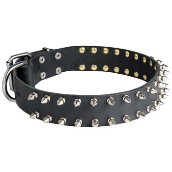 Spiked Leather Collar for BRED-NAME