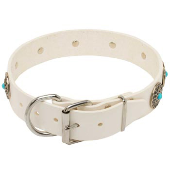 Leather   Samoyed Collar White Fancy for Dog Training, Walking
