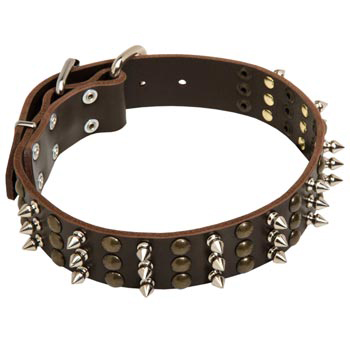 Samoyed Handmade Leather Collar 3  Studs and Spikes Rows