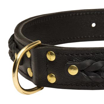 Samoyed Wide Leather Collar with D-ring