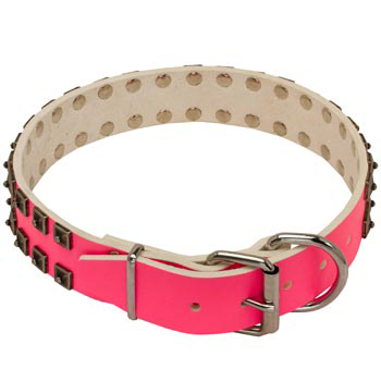 Samoyed Pink Leather Collar for Walking She-Dogs