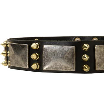 Stylish Leather Dog Collar for Samoyed