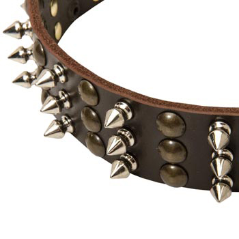 3 Rows of Spikes and Studs Decorative Samoyed  Leather Collar