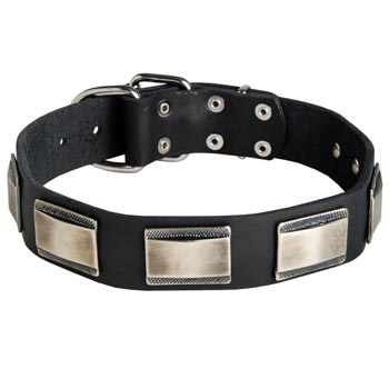 Leather Samoyed Collar with Solid Nickel Plates