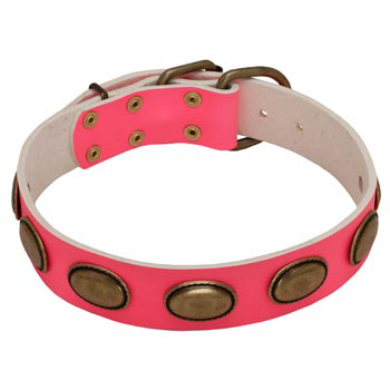 Pink Leather Samoyed Collar for Female Dogs