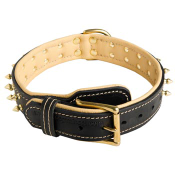 Leather Dog Collar Spiked Adjustable for Samoyed Walking