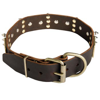 Spiked Leather Samoyed Collar