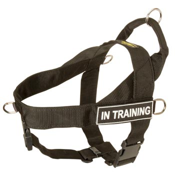 Samoyed Nylon Harness with ID Patches