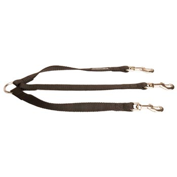 Triple Nylon Leash for Walking 3 Samoyed Dogs